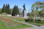 Пискаревское кладбище и березы