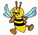 Загадки о пчёлах