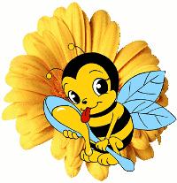 Фестиваль мёда в Омске
