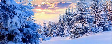 Зимняя природа прекрасна
